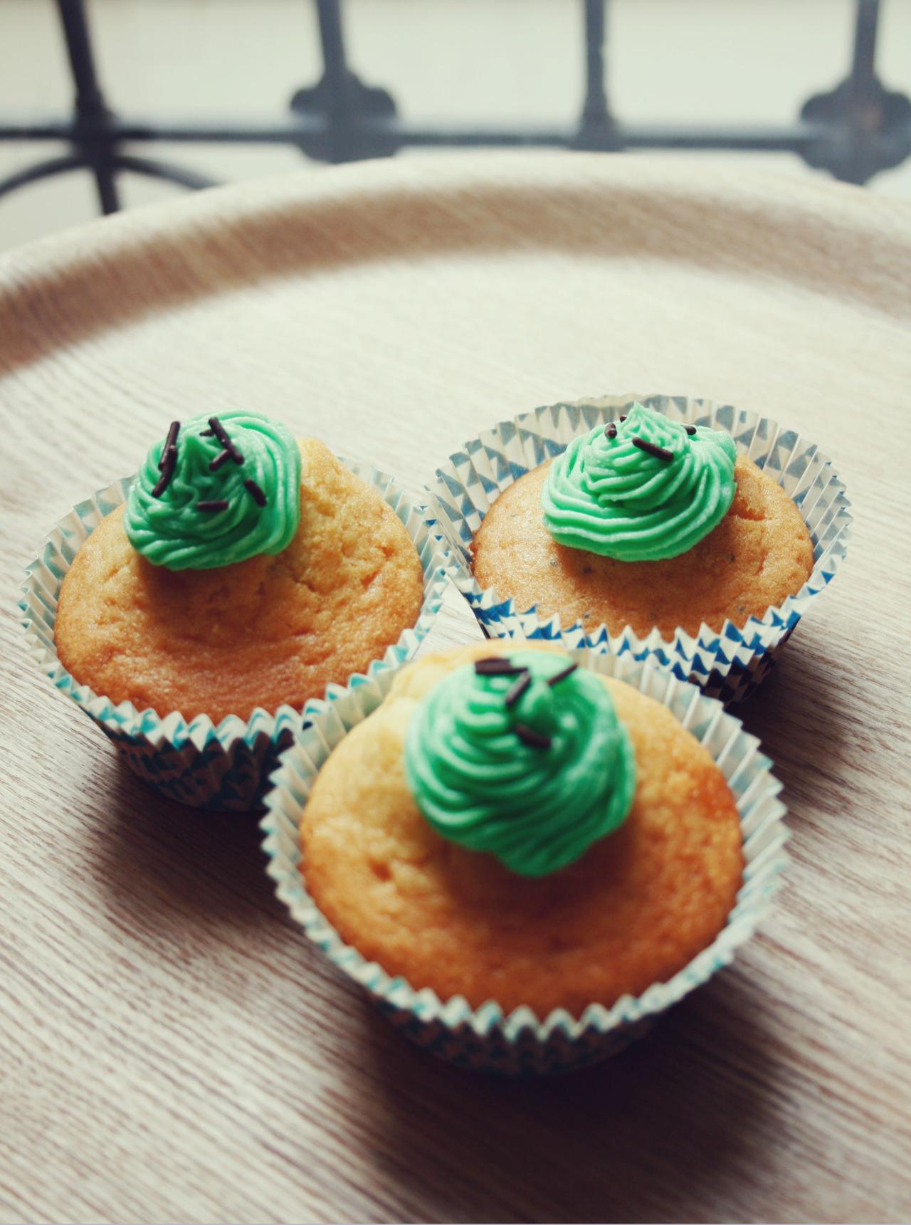 cupcakes color s citron graines de pavot pistache s ta salt. Black Bedroom Furniture Sets. Home Design Ideas